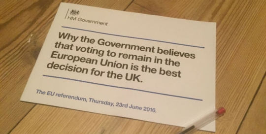 Turn out or else: do referendum campaigns actually change voters' minds?