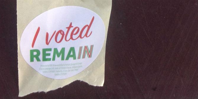 i voted remain sticker