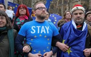 pro-EU protestors