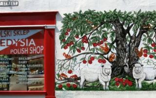 polski sklep polish shop