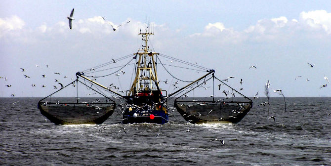 EU Common Fisheries Policy is bound for a Brexit shake-up