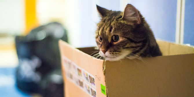 Schrödinger's cat and the paradox of Brexit