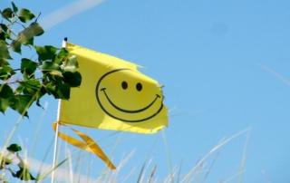 Happiness-Explained-Image-1