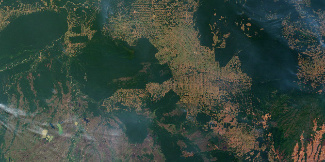 How changes in the prices of milk and beef affect deforestation in Brazil
