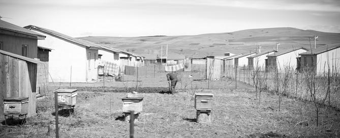 south ossetia IDP