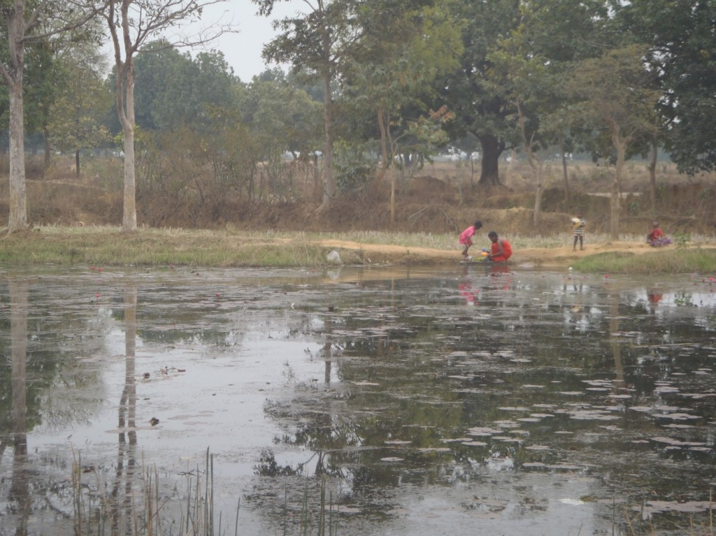 Figure 1: Fresh water ponds in the villages are now completely polluted due to mining activities (Photo credit: Kanchan Gandhi, February 2013)