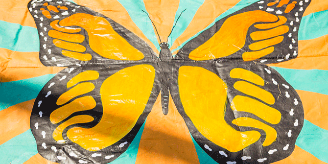 Butterfly Politics: changing the law to advance gender equality