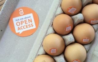 OA-eggs