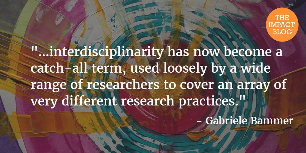 interdisciplinary bammer