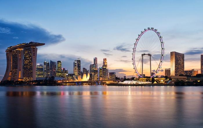 The dark side of a successful developmental state: Singapore's socioeconomic dilemma