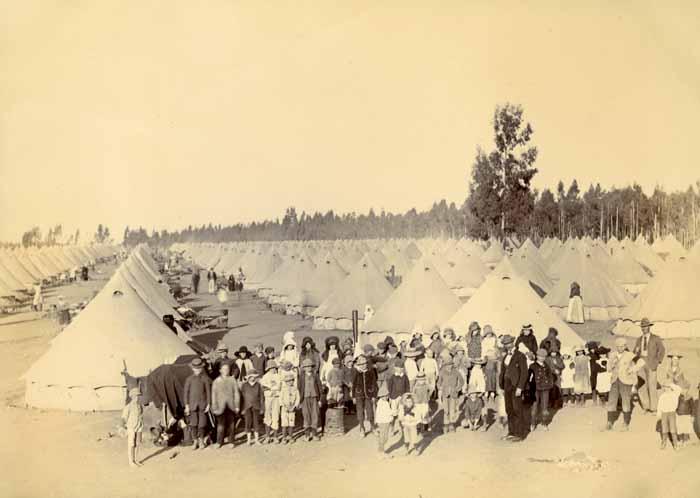 Boer camp, 1901 (ref 7MGF/E/1/125)