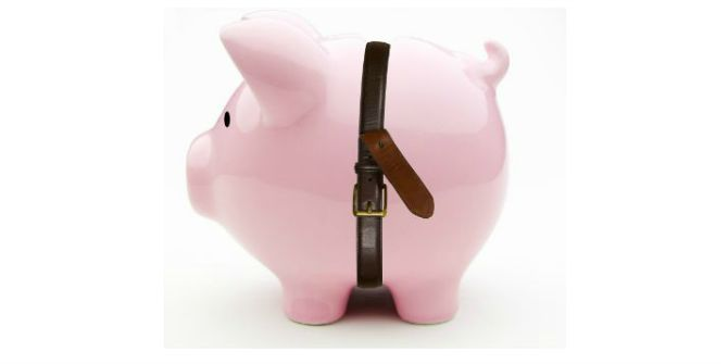 austerity pig