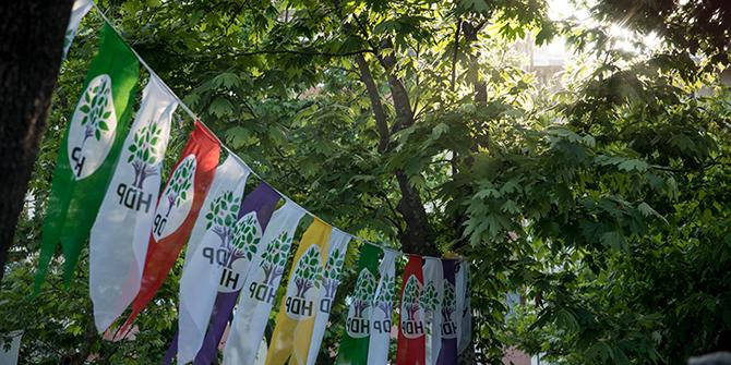HDP flags (Julia Buzaud/flickr.com)
