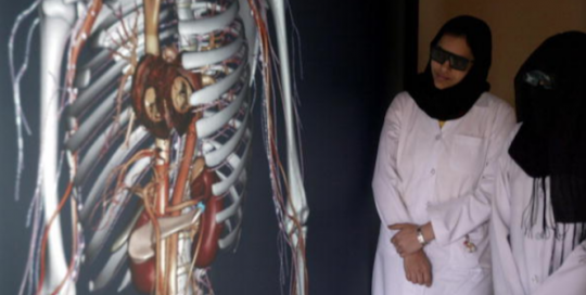 Diagnosing Kuwait's Digital Health Maturity: Implications for Policy