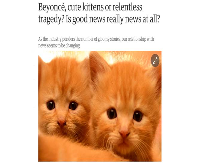 Kitten screen grab