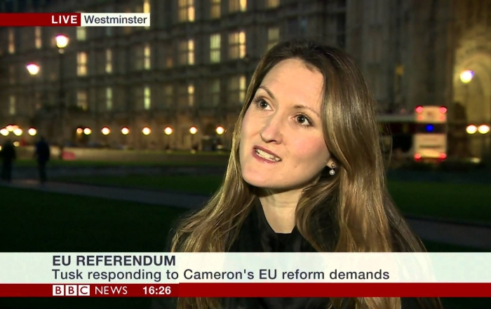 What role did the media play in the EU referendum?