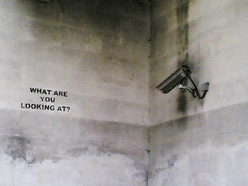 Improbulus CCTV