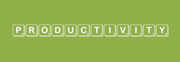 productivity_puzzle