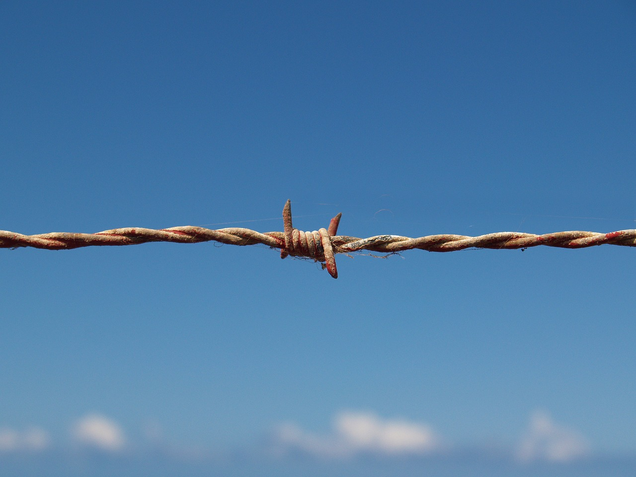 barbed-wire-1199172_1280