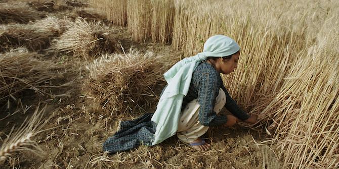 Harvesting crops. Bangladesh. Photo: Scott Wallace / World Bank CC BY-NC-ND 2.0
