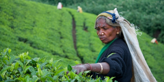 Escaping the paradox of slow growth and labour scarcity in Sri Lanka