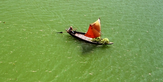 Despite legislative and institutional arrangements, Bangladesh is struggling to improve environmental governance