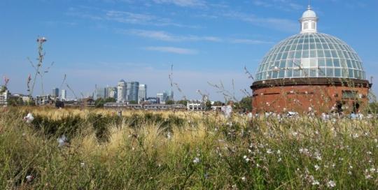 My neighbourhood: Greenwich