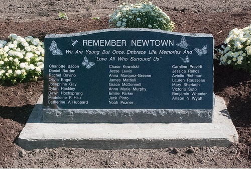 Remember Newtown