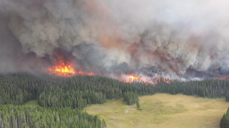 Forest Fire in Yellowstone National Park, 2013 Credit: USDAgov (Creative Commons BY)