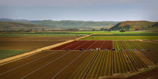 US farm featured